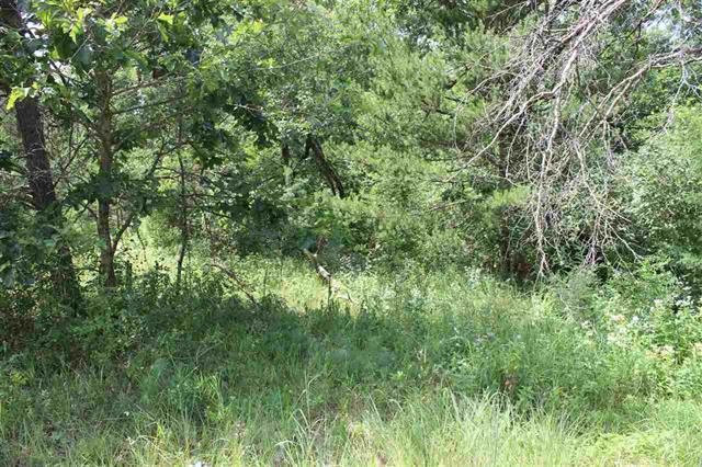 2141 County Road Z, Quincy, Wisconsin 53934, ,Lots & Acreage,For Sale,County Road Z,1902530