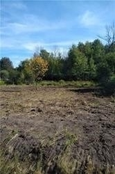 Land For Sale In East Gwillimbury , ,Land,For Sale,Warden