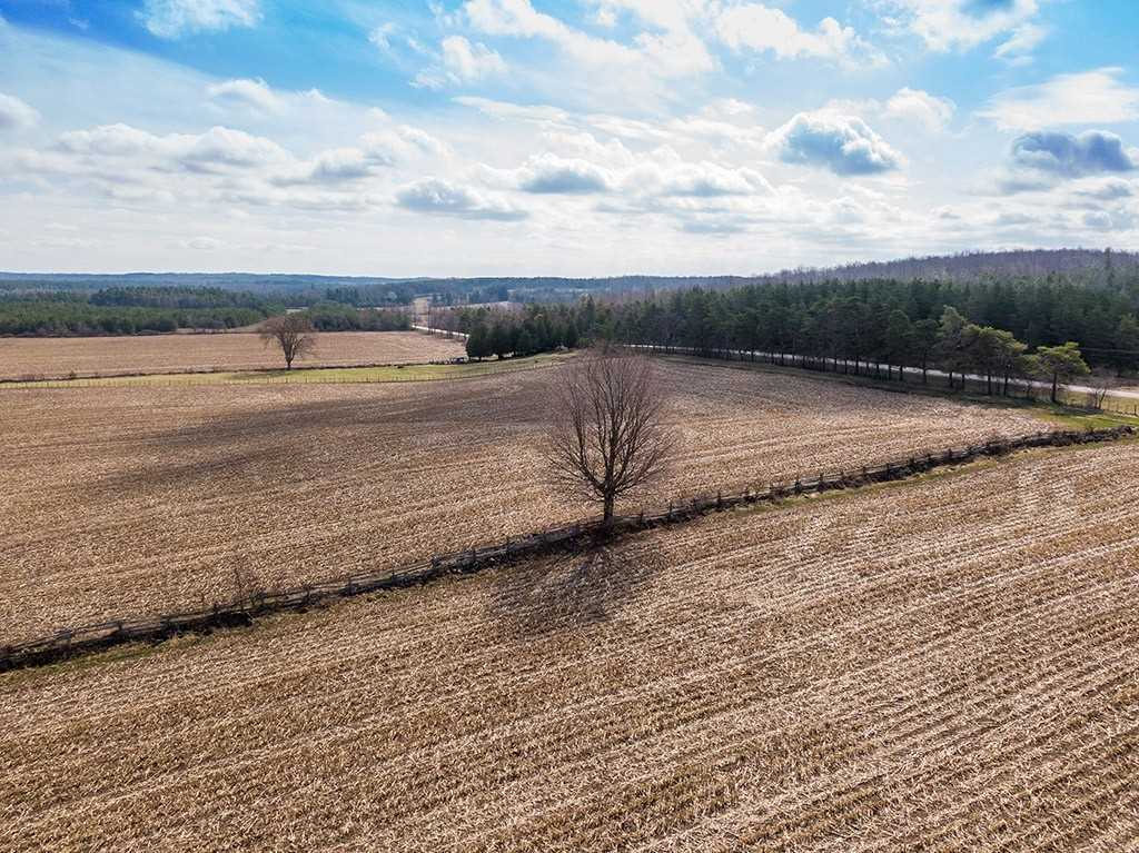 Farm For Sale In Chatsworth , ,Farm,For Sale,60