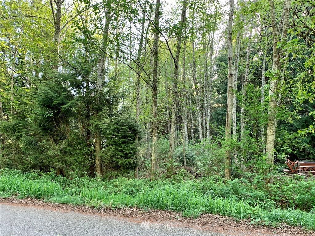 0 Deer Road, Point Roberts, Washington 98281, ,Land,For Sale,Deer,NWM1762155