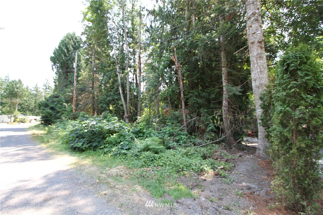 0 Shaw Crescent Street, Point Roberts, Washington 98281, ,Land,For Sale,Shaw Crescent,NWM1801907