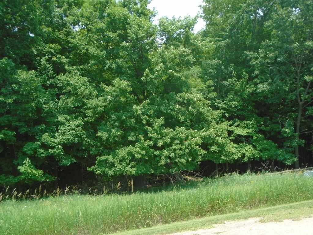 Lot 152 Pine Cone Ln, Woodland, Wisconsin 53941, ,Lots & Acreage,For Sale,Pine Cone Ln,1913857