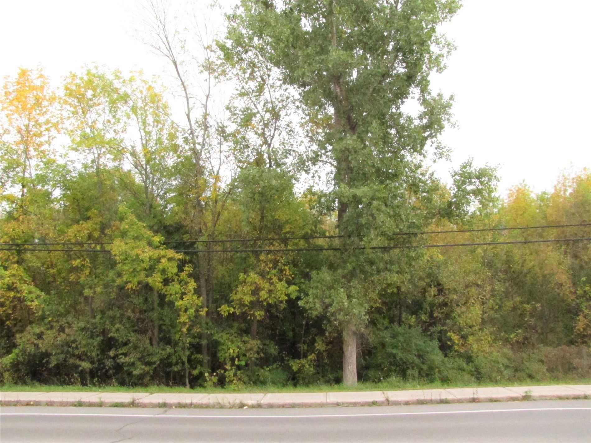 Vacant Land For Sale In Loyalist