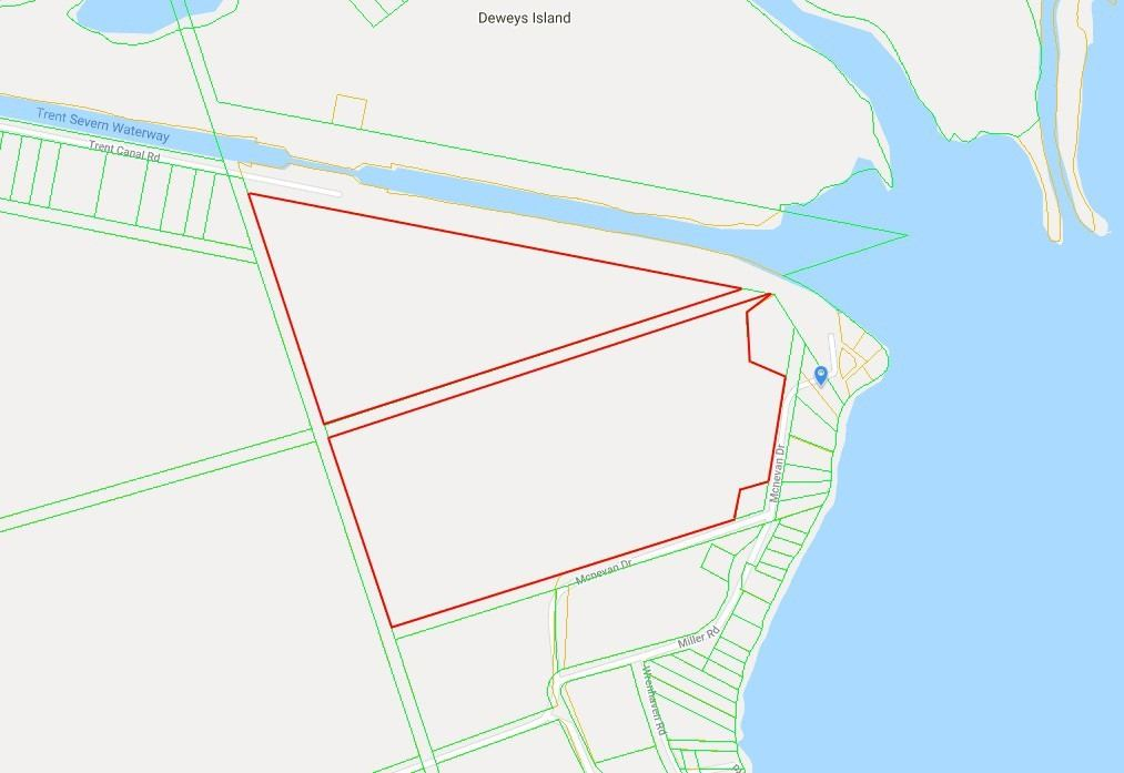 Land For Sale In Kawartha Lakes , ,Land,For Sale,Mcnevan