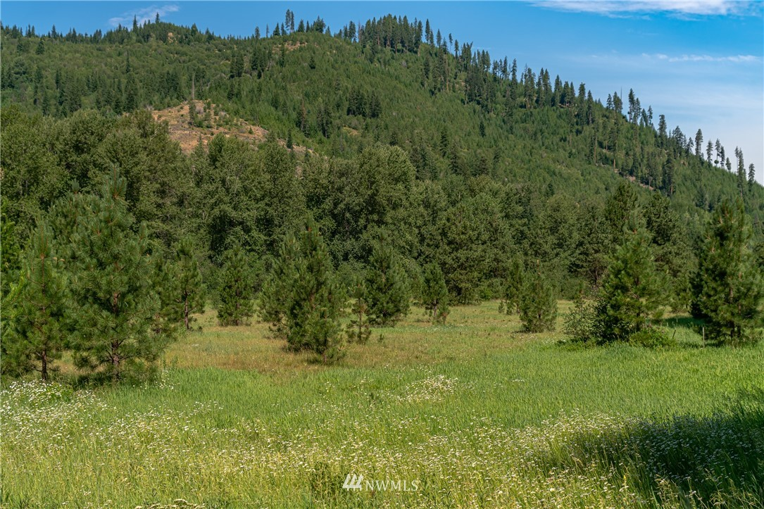 0 RES Undisclosed, Leavenworth, Washington 98826, ,Residential,For Sale,Undisclosed,NWM1808109