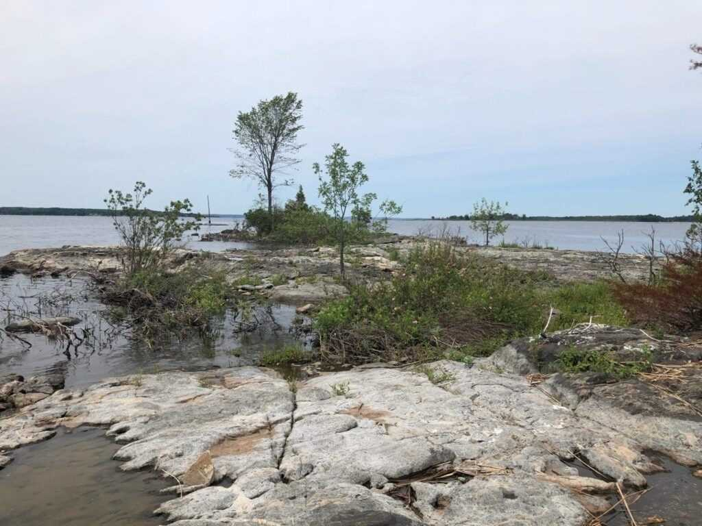 Vacant Land For Sale In Tay , ,Vacant Land,For Sale,54 Georgian Bay