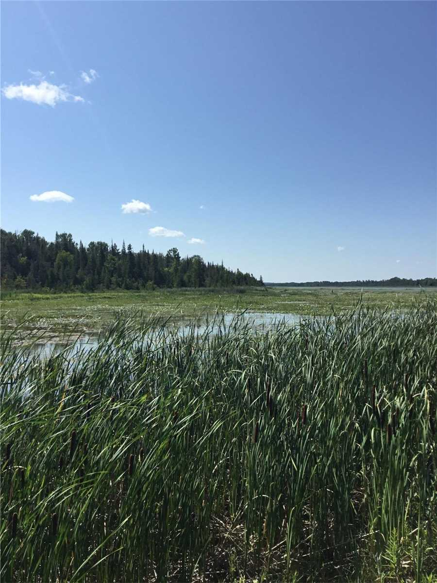 Vacant Land For Sale In Kawartha Lakes