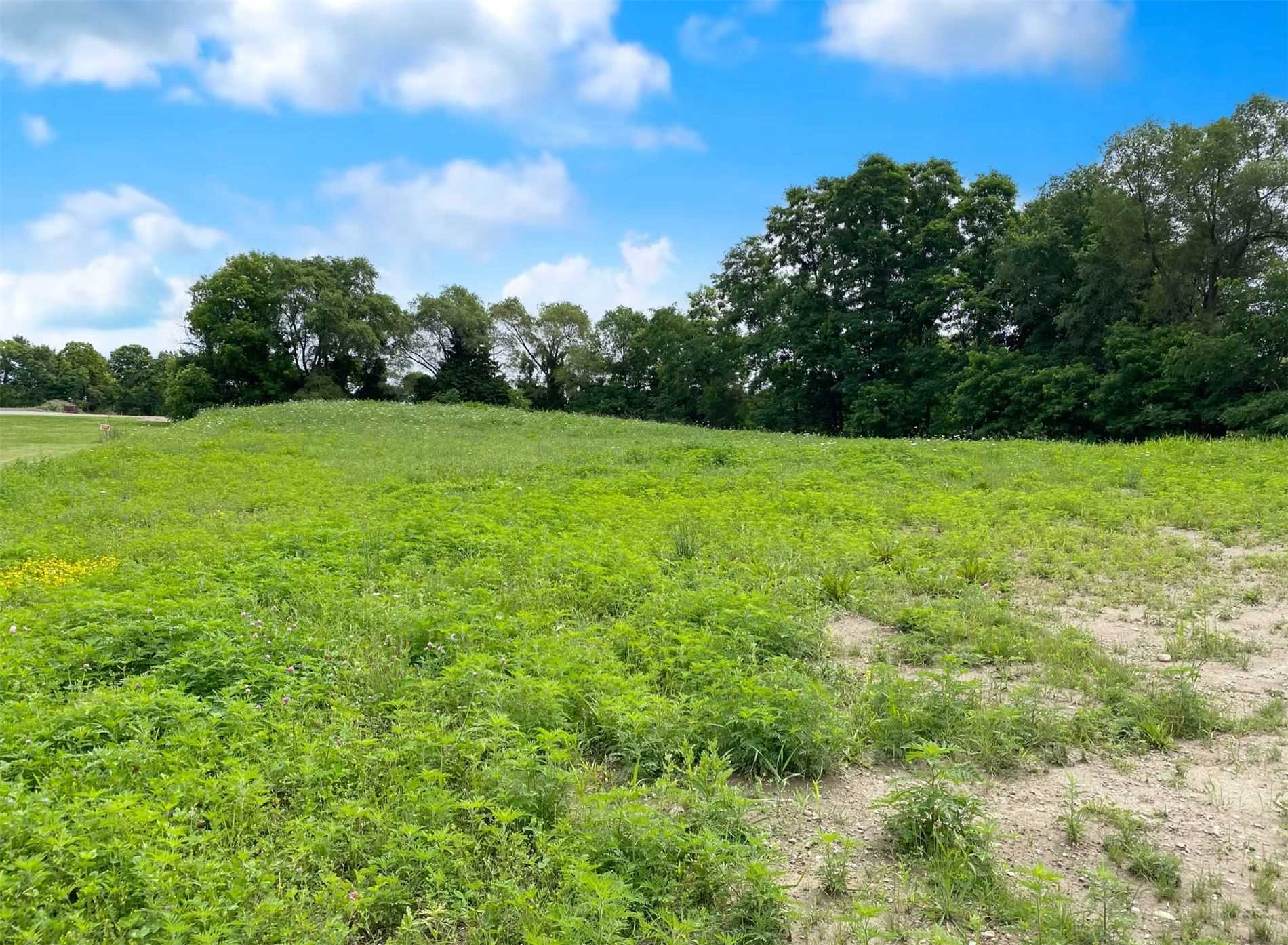 Vacant Land For Sale In Innisfil , ,Vacant Land,For Sale,Philson