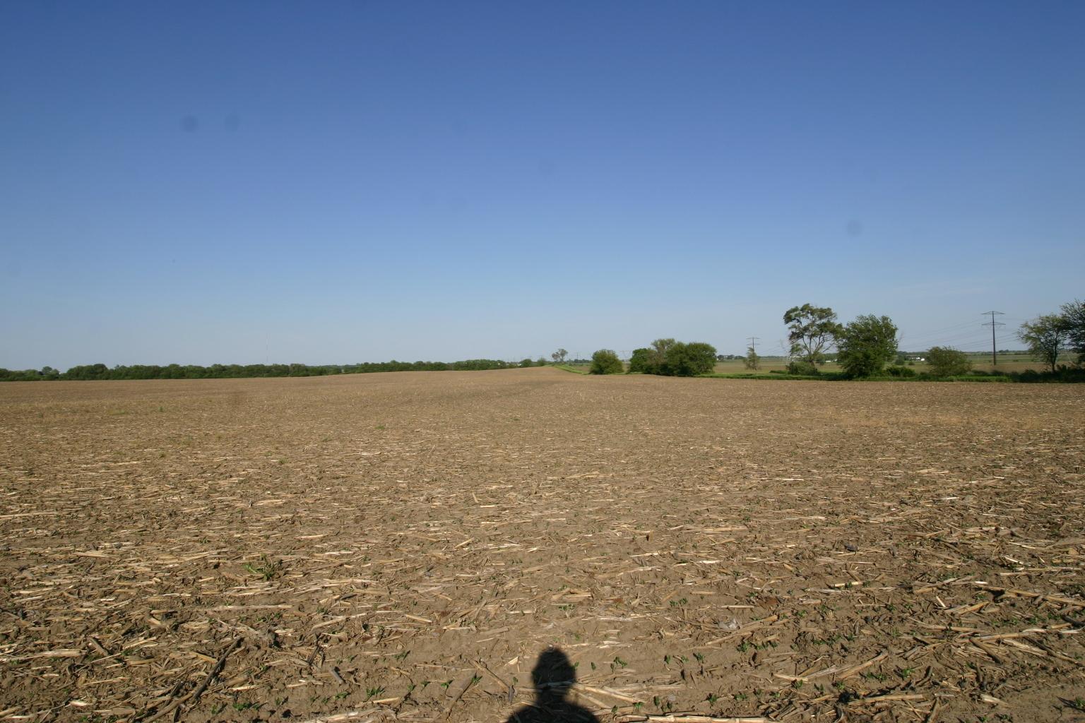 31221 Ashland Avenue, Beecher, Illinois 60401, ,Farm,For Sale,Ashland,MRD10995363