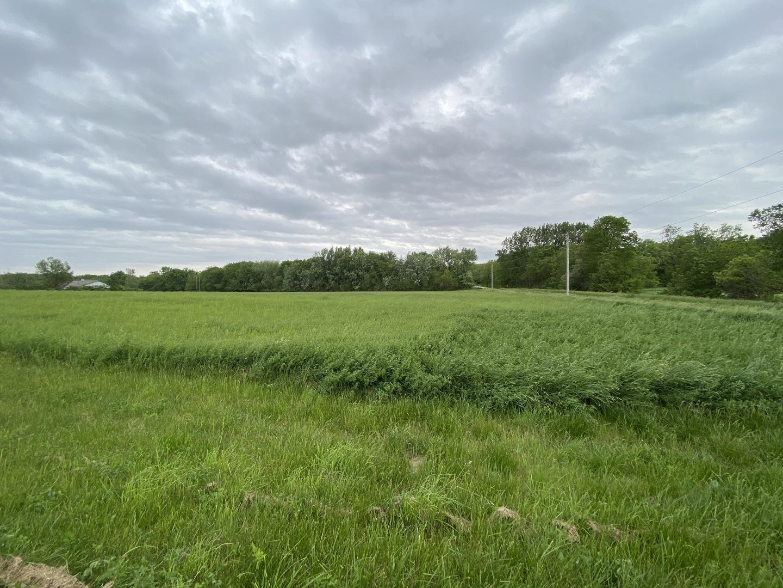 00 Honeysuckle Road, Earlville, Illinois 60518, ,Farm,For Sale,Honeysuckle,MRD11103169