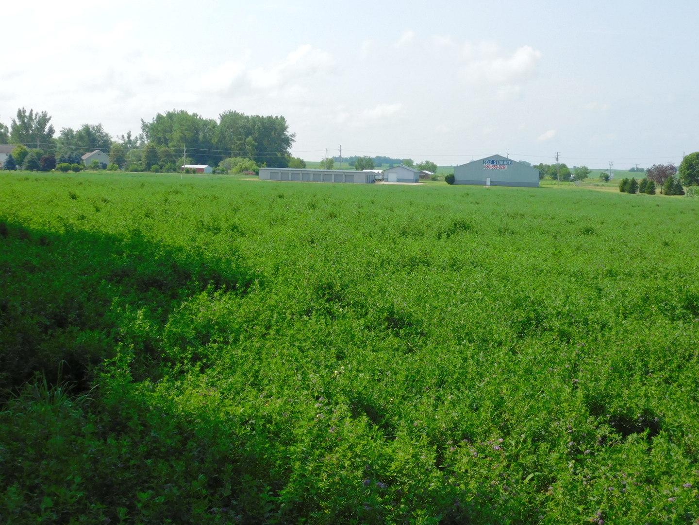 000 Block 2 Lot 10 Street, Paw Paw, Illinois 61353, ,Farm,For Sale,Block 2 Lot 10,MRD11160178
