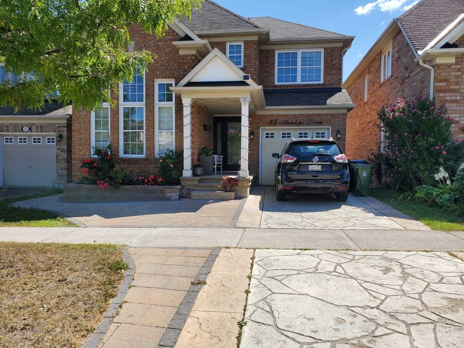 Detached house For Lease In Toronto - 35 Antelope Dr, Toronto, Ontario, Canada M1B6K3 , 2 Bedrooms Bedrooms, ,2 BathroomsBathrooms,Detached,For Lease,Bsmt,Antelope