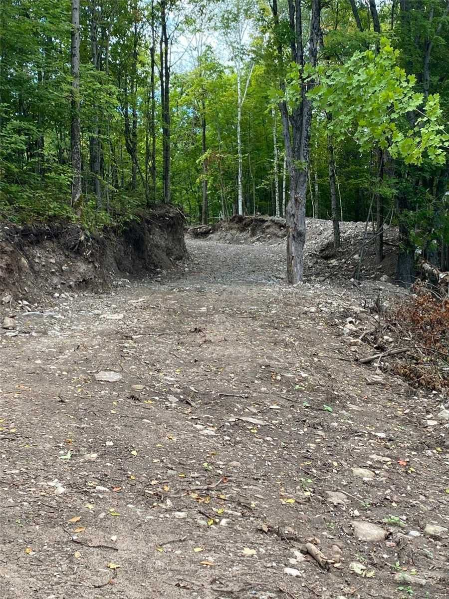 Vacant Land For Sale In Galway-Cavendish and Harvey , ,Vacant Land,For Sale,Bass Lake