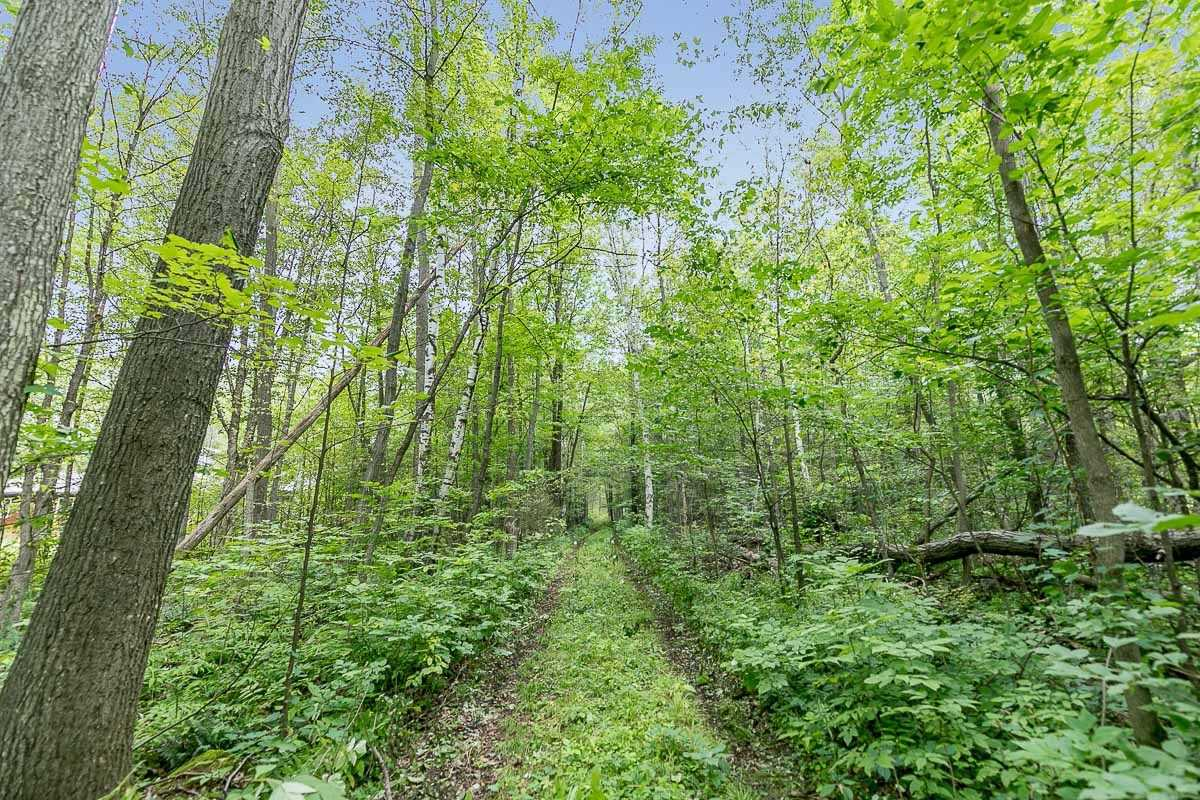 Vacant Land For Sale In Oro-Medonte , ,Vacant Land,For Sale,Peter