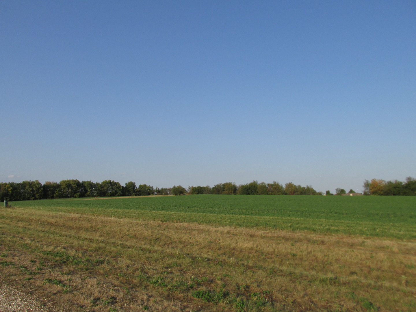 1311 Colonial Drive, Lee, Illinois 60530, ,Land,For Sale,Colonial,MRD11225352