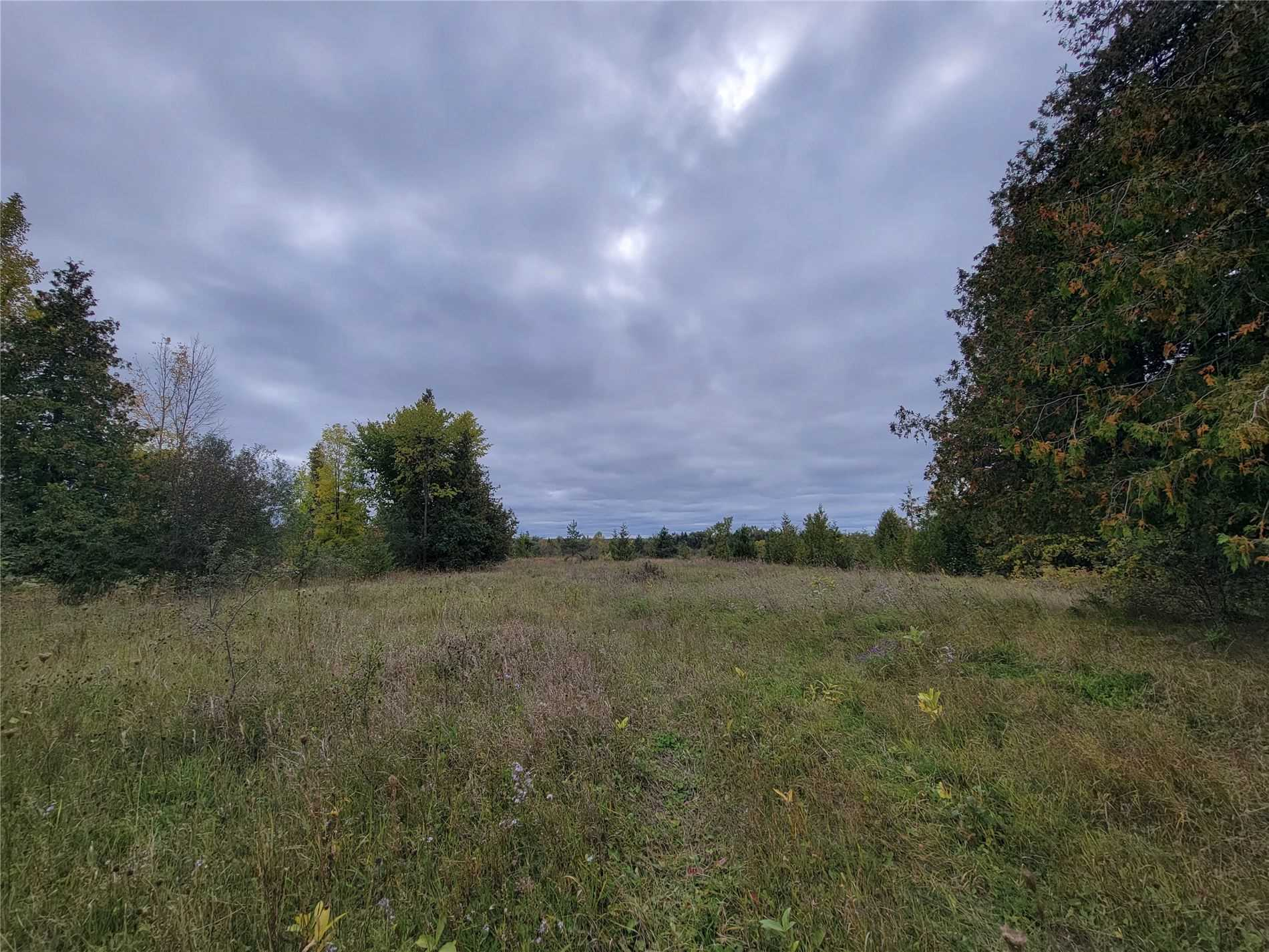 Vacant Land For Sale In Brock , ,Vacant Land,For Sale,Simcoe