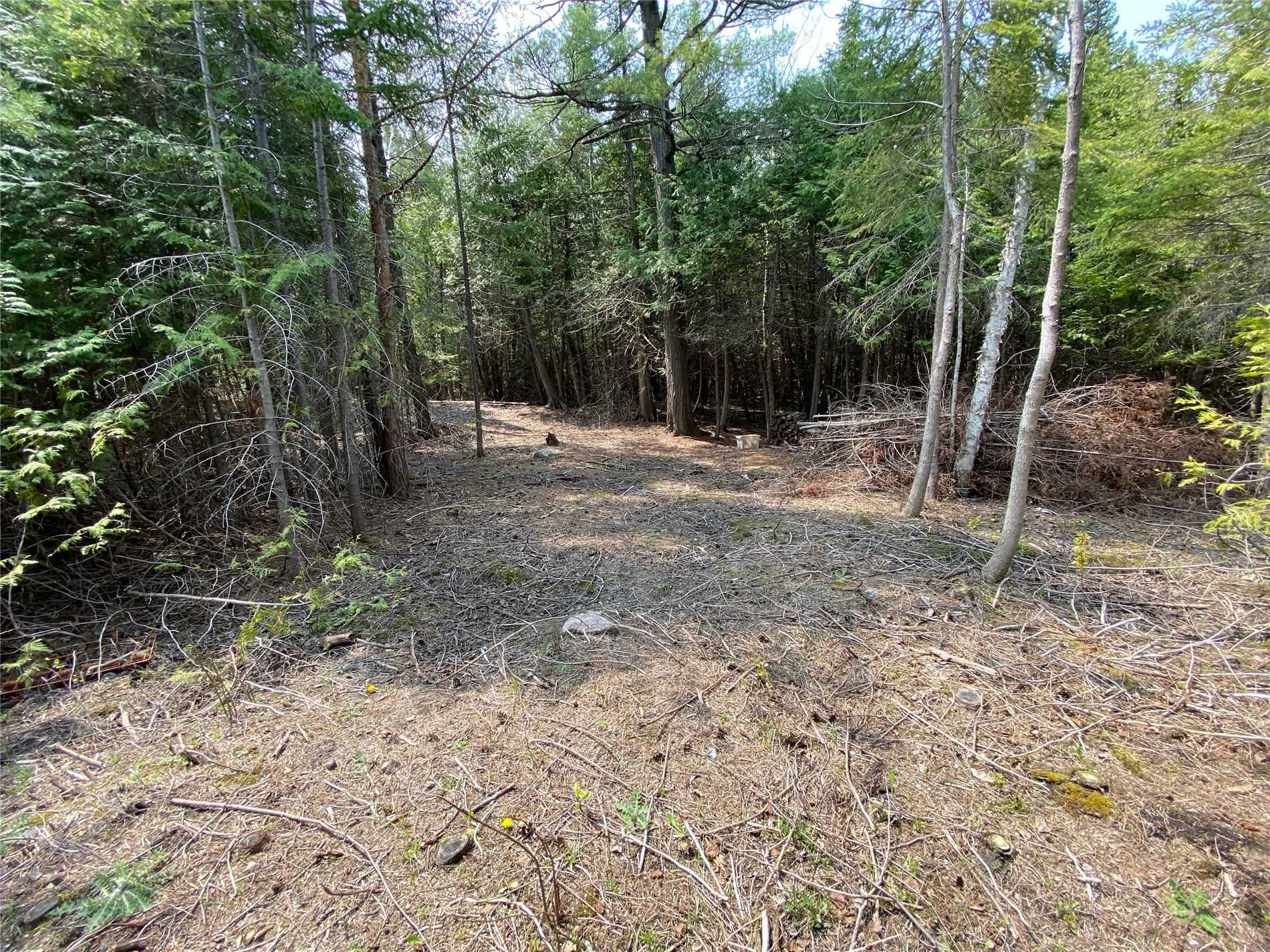 Vacant Land For Sale In Wasaga Beach , ,Vacant Land,For Sale,Bay Sands