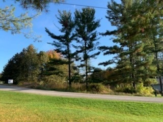 Vacant Land For Sale In Smith-Ennismore-Lakefield