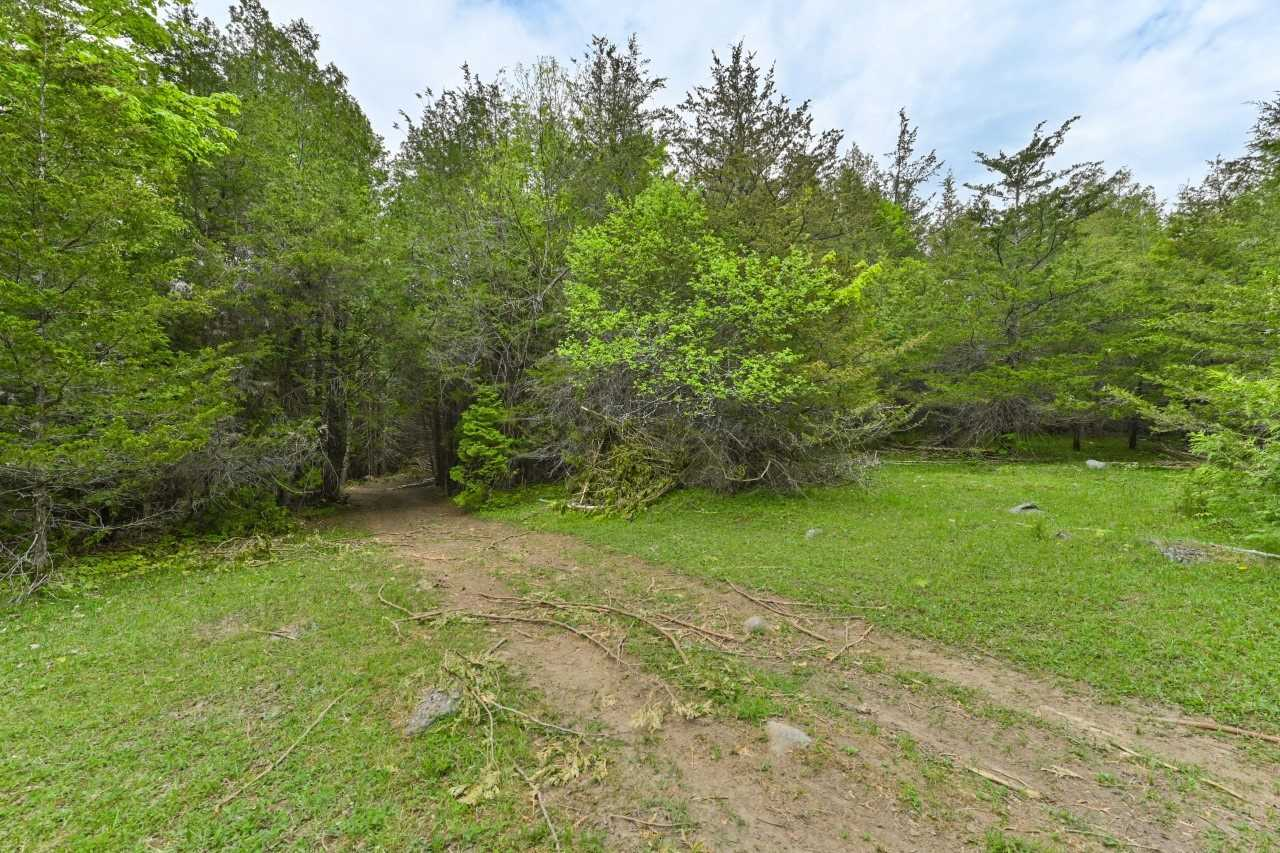 Vacant Land For Sale In Tweed